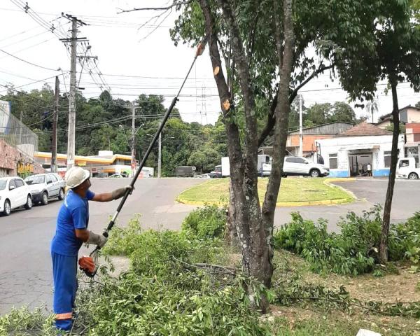 Semurb faz levantamento de copas na avenida Thomaz Edison