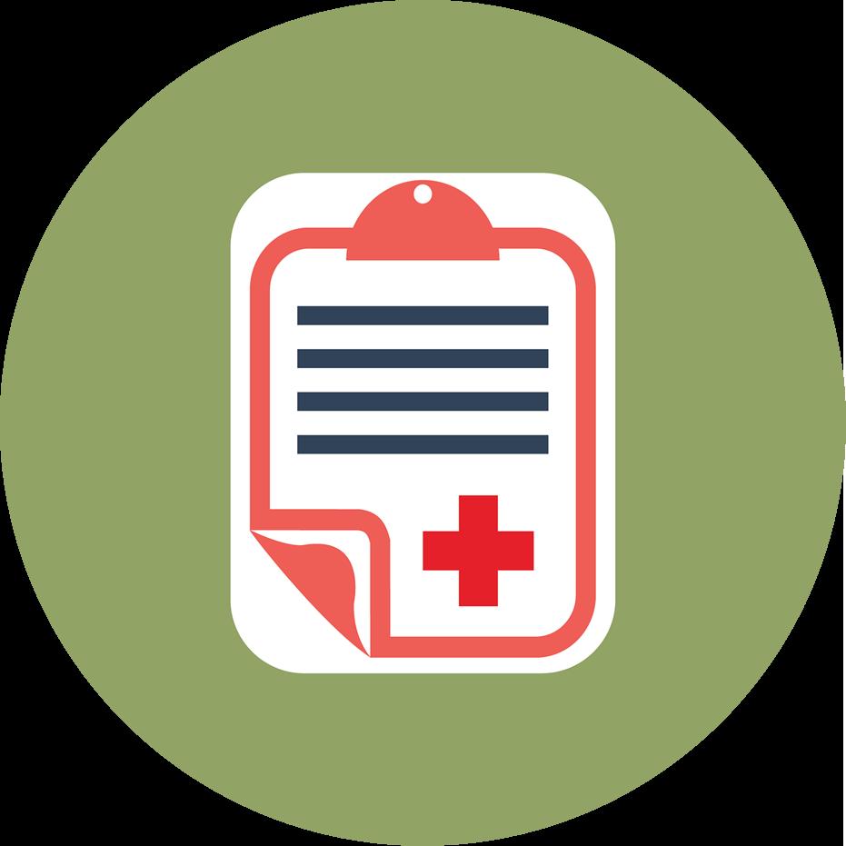 Fluxo diário Custeio da Saúde icone
